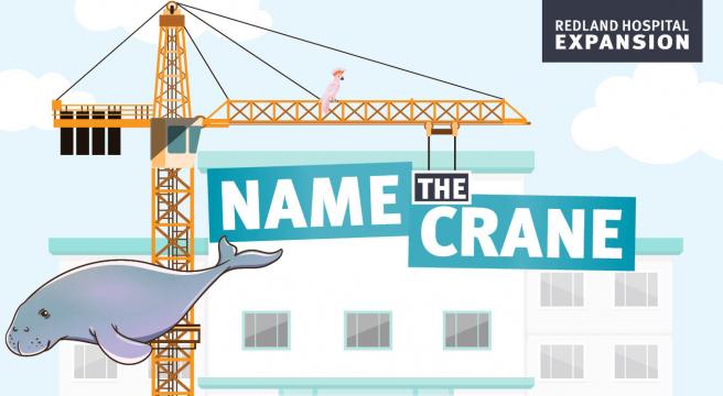 Name the crane at Redland Hospital