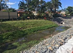 April: Melaleuca planting buffer zone