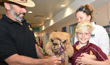 Alpaca visits Beaudesert Hospital