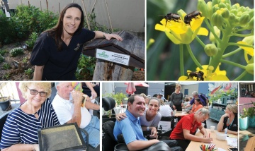 rehabilitating with bees