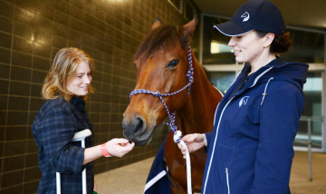 Equestrian therapy - Emily Gerhardt