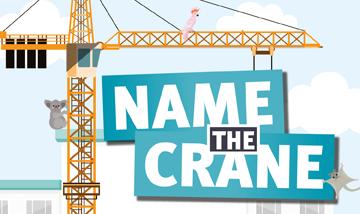 Name the crane