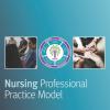 professional_practice_model.pdf